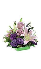 Flowers Colors Meanings - grower direct special occasions color meanings of flowers