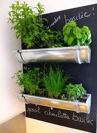 wall hanging indoor herb garden