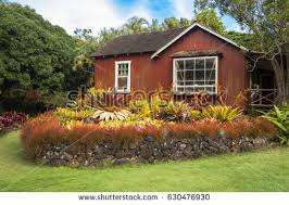 polynesian home stock images royalty free images u0026 vectors