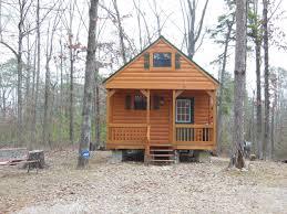 amazing tiny houses download tiny house arkansas astana apartments com