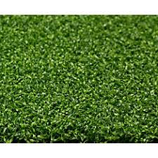 Green Turf Rug Shop Artificial Grass At Homedepot Ca The Home Depot Canada
