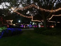 largo central park christmas lights christmas in the wild at lowry park zoo olga n travel journal