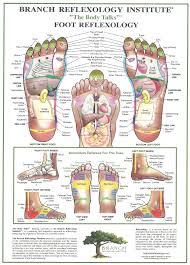foot reflexology jpg 1152 1600 доктор влад pinterest