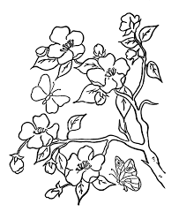 flowers coloring pages with butterfly flower coloring pages of