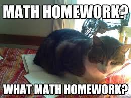 Homework Meme - no homework meme