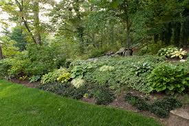 Backyard Ground Cover Ideas No More Weeds With Ground Cover Erosion Backyard And