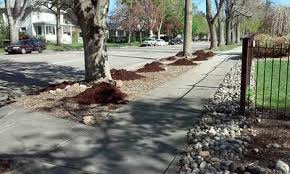 fort collins landscaping services mulch bark wood chips dirt