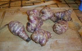 cuisiner un lapin au four recette lapin au four et ses topinambours 750g