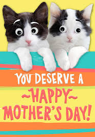 cute kittens with googly eyes mother u0027s day card greeting cards