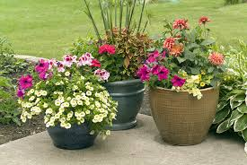 Planter Garden Ideas Decoration In Flower Planter Ideas For Patio Patio Container