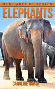 buy elephant amazing photos u0026amp fun facts book about elephants