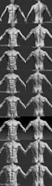 Human Anatomy Male 1106 Best Anatomy Man Images On Pinterest Anatomy Reference