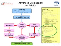 a new pea diagnostic algorithm ecg and ultrasound u2013 adelaide