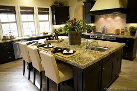 asian style kitchen cabinets idea kitchen design asian kitchen design inspiration kitchen
