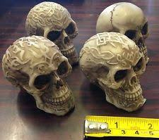 Celtic Skull - celtic skull collectables ebay