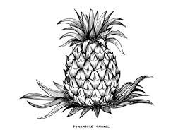 pineapple chunk u2014 virginia company