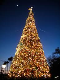 christmas in lebanon by ashtyn clarke