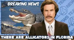 Breaking News Meme - ron burgundy breaking news meme waterfront properties blog