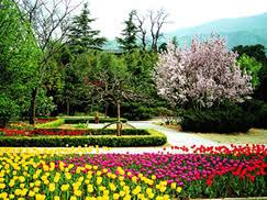 Beijing Botanical Garden Beijing Botanical Gardens Beijing Attractions Beijing Travel Agency
