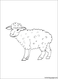sheep coloring print coloring pages