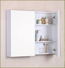 Wall Mount Medicine Cabinets Wall Mounted Medicine Cabinet Without Mirror Home Design Ideas