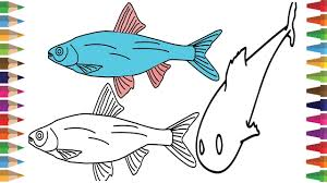 drawing fish coloring page for kids learning color how to draw a