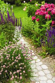 full image for superb garden design with low maintenance gardens
