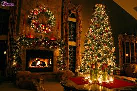beautiful decorated trees withal tree and lights