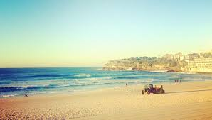 Gidget Bondi For Sale by About Lifeguard Rights And Skatepark Lefts Venus Goes Gidget