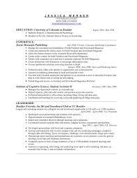 exle of simple resume hobby resume sle resume