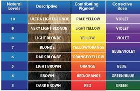 igora royal hair color color to develiper ratio killer strands hair clinic developer developer which developer