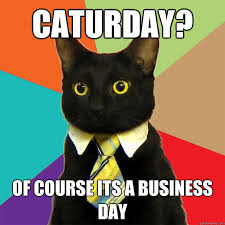 Caturday Meme - caturday of course its a business day cat meme cat planet cat