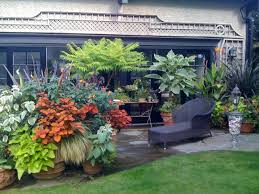 Tropical Gardening Ideas Pretty Design 10 Container Garden Design Ideas Container Gardening