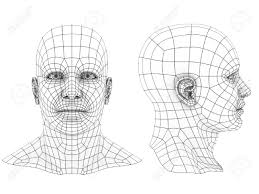 human head 3d wireframe front and side view stock photo picture