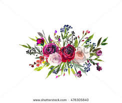 burgundy flowers burgundy flower stock images royalty free images vectors