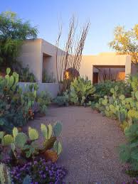 native plants of arizona steve martino landscape architect maderos residence paradise