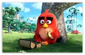 red angry birds movie 4k hd desktop wallpaper 4k ultra hd