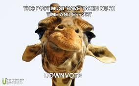 Drunk Giraffe Meme - i present to usersub downvote usersub giraffe album on imgur