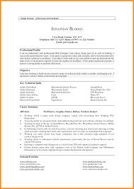 professional summary example for resume contemporary resume