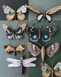 butterflies colossal
