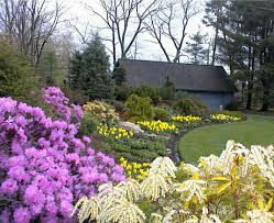 Flowering Shrubs New England - garden ideas new england interior design