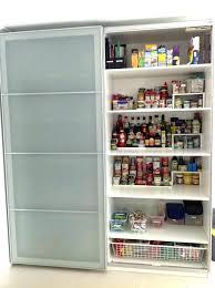 Storage Cabinet Kitchen Kitchen Pantry Storage Cabinet Istanbulmatbaa Info