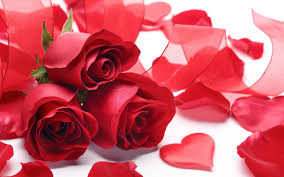 Different Shades Of Red Fly High Different Shades Of Love What Will Italian Valentines