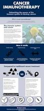 immunology infographics british society for immunology