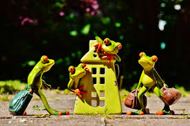 home sweet home decoration free images cute decoration frog hibian yellow toy deco