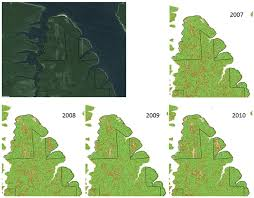 Russian Boreal Forest Disturbance Maps by Supporting A Forest Observation System For Siberia Earth