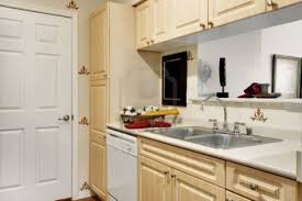Kitchen Designs For Small Apartments Excellent Modest Small Apartment Kitchen Storage On Apartments