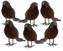 halloween black feathered small crows 6 pc black birds ravens