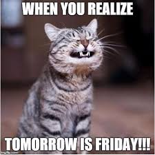 Almost Friday Meme - cat grinning whiskers tomorrow is friday image 5668 picturescafe