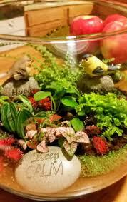 25 best terrarium bowls ideas on pinterest dish garden plants